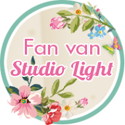 FAN STUDIO LIGHT