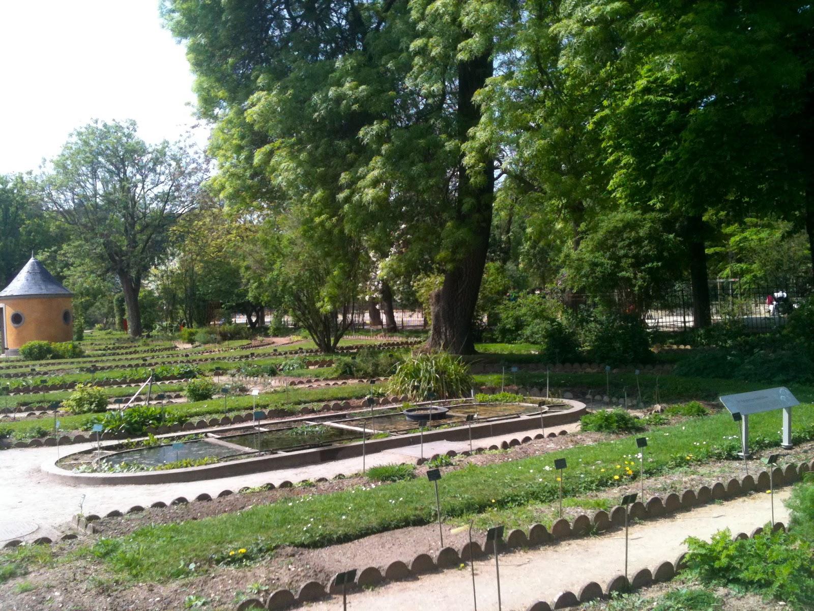 Ma Poussette A Paris Faune Flore Et Famille Le Jardin Des Plantes