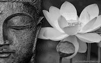 http://viajandocomounapluma.blogspot.com.es/2014/10/meditaciones.html