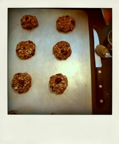 a bit of sunshine: chocolate cherry oatmeal cookies (vegan)