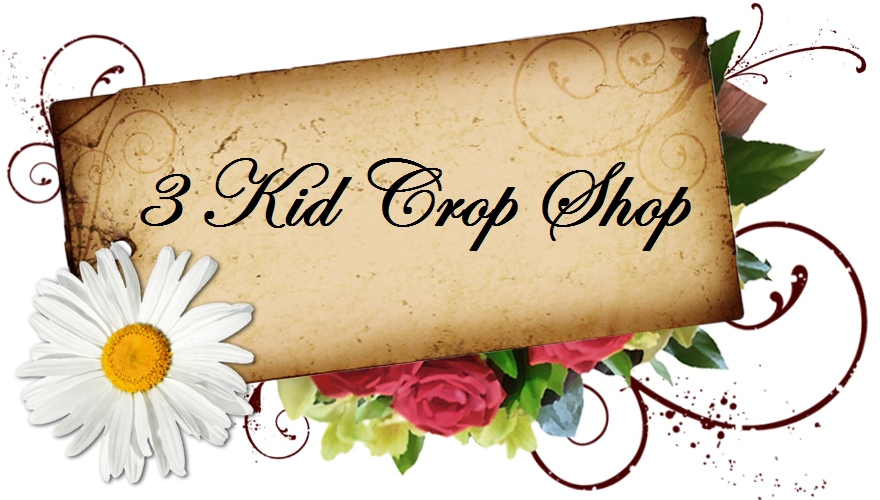 3 Kid Crop Shop