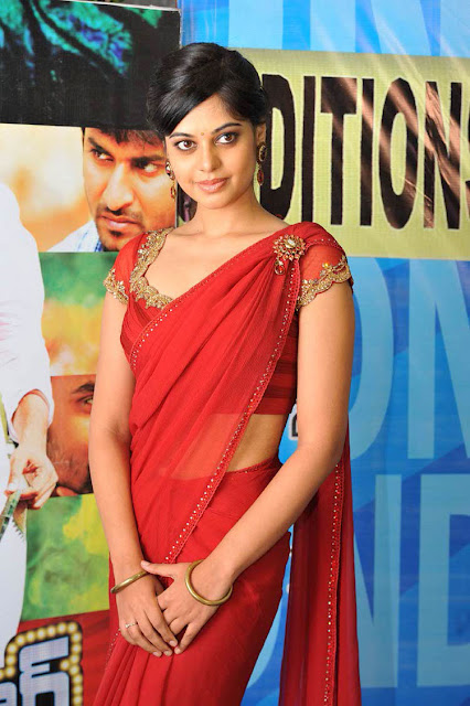 Bindu Madhavi In Full Saree 8