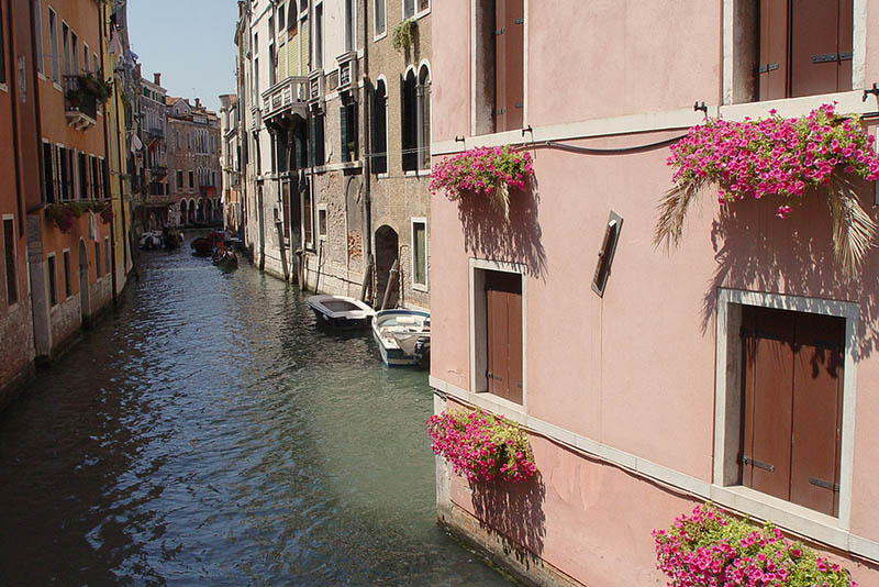 flowers windows, Pink in Venice