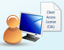 Windows Server 2019 - Client Access Licenses
