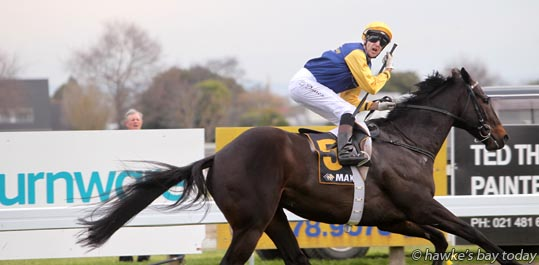 Leith Innes on Kawi, winner of Race 7, Makfi Challenge WFA Stakes, $200,000, 1400m, the feature race - Makfi Challenge Stakes Daffodil Raceday at the Hawke's Bay Racing Centre, Hastings Racecourse, Hastings, also a fundraiser for Cancer Society Hawke's Bay. photograph