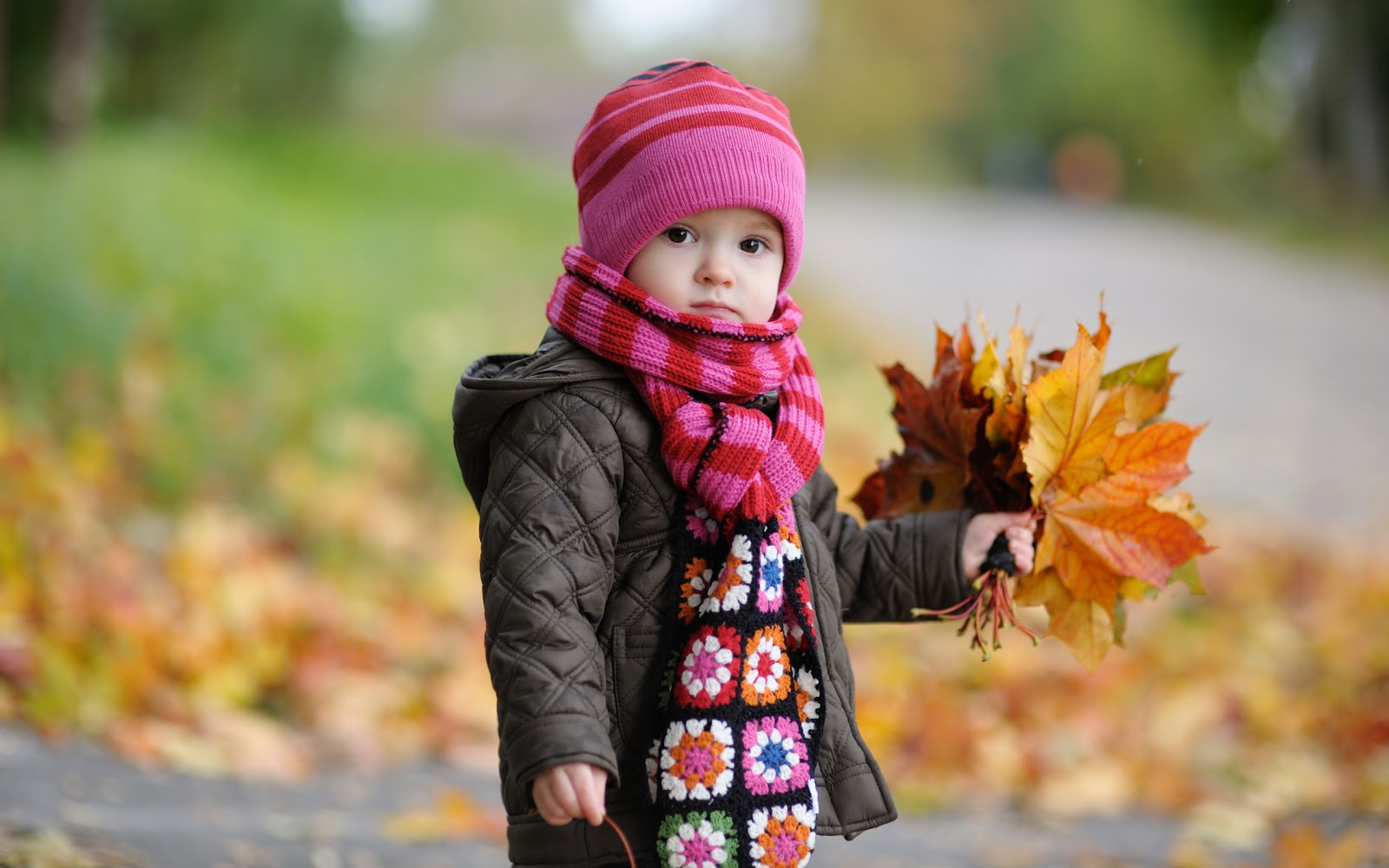 http://1.bp.blogspot.com/-C4HvwSM5sxI/UN6_ZZ8AJQI/AAAAAAAAA5Q/us-ozCsQ4Ak/s1600/cute_baby_in_autumn-wide.jpg