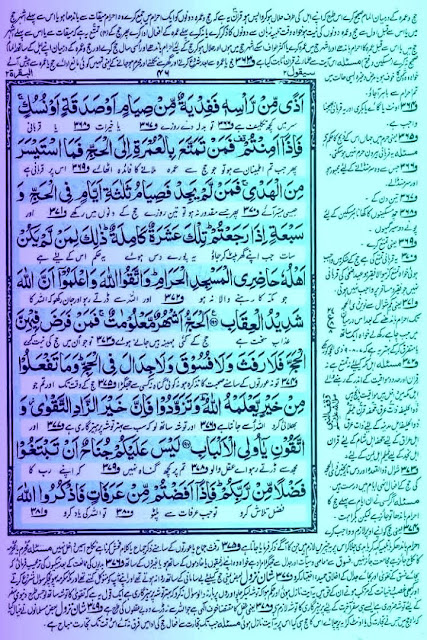 Quran,Haj,Pillar of Islam,Surah,