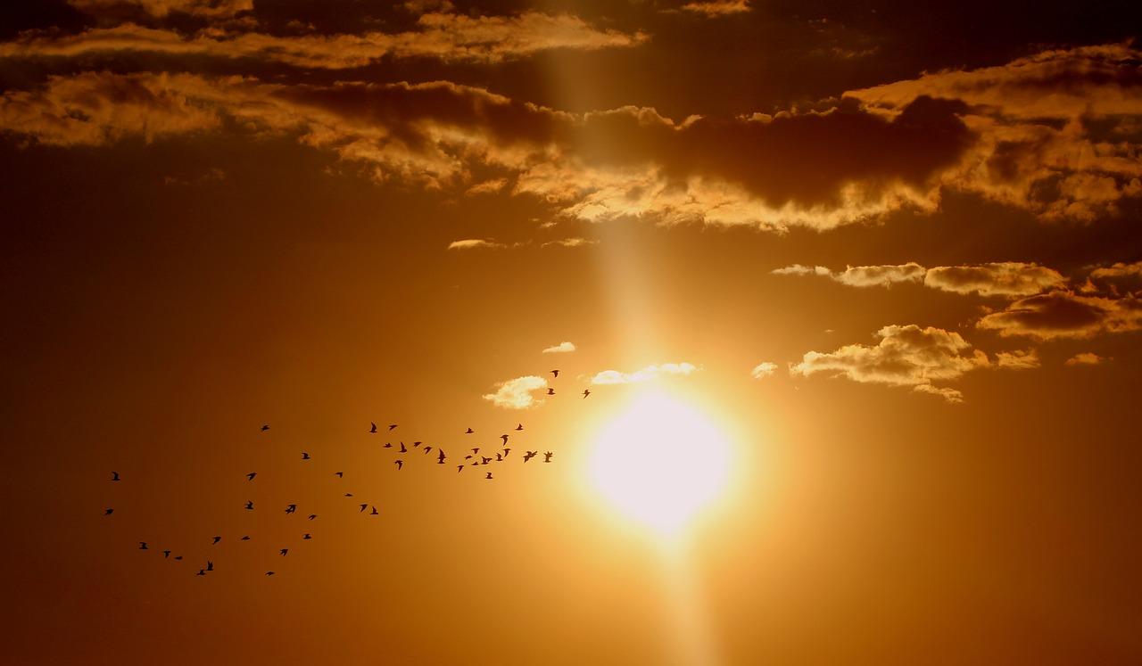 Ο ήλιος περνάει σε λιγότερη ενεργή φάση