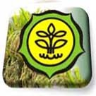 Kementerian Pertanian