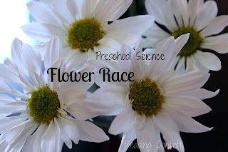 15 science activities for preschoolers