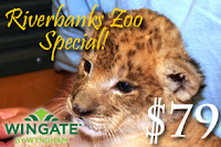 Photo of Riverbanks Zoo Hotel Special