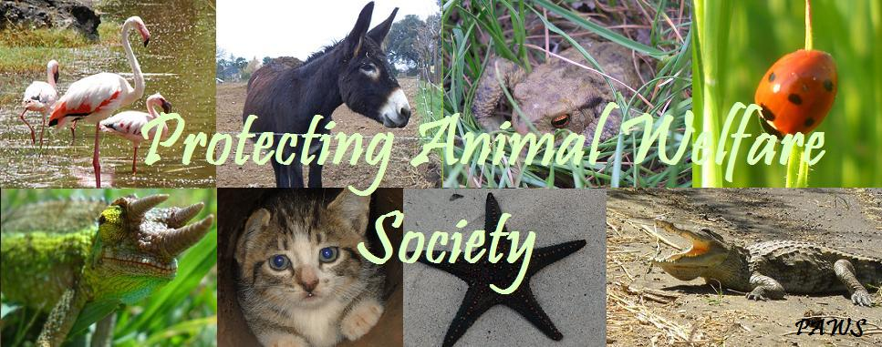 Protecting Animal Welfare Society (^._.^)