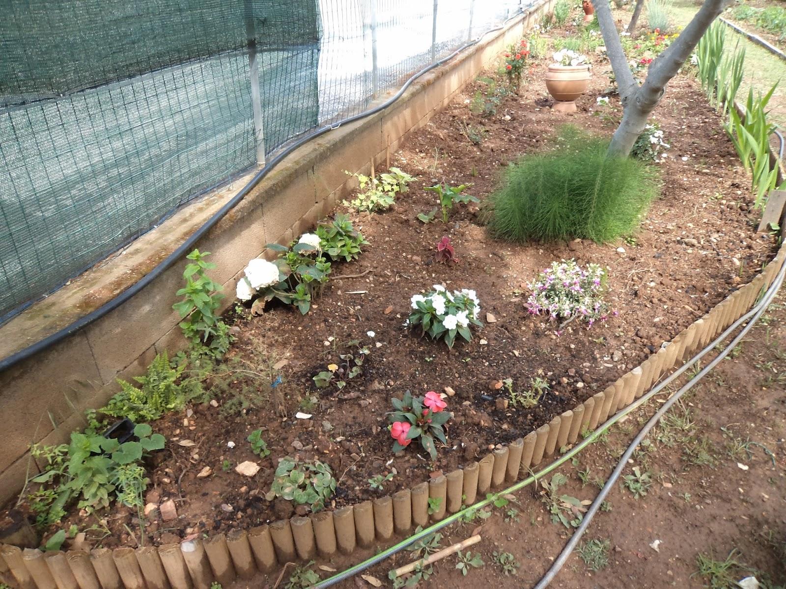 I giardini di carlo e letizia giugno 2015 for Orto giardino