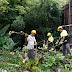 Siguen los operativos de limpieza de baldíos en la Ciudad