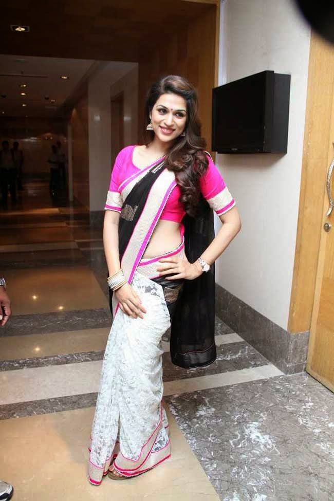 Shraddha Das In Designer Half and Half Saree