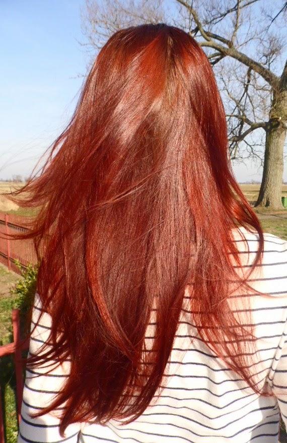 Niedziela dla włosów 28 | Olejowanie na glicerynę oraz intensywnie regenerująca maska Babuszki  Agafii