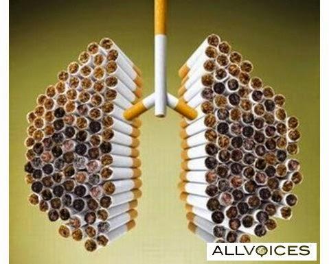 Beberapa Bahaya Merokok Bagi Kesehatan