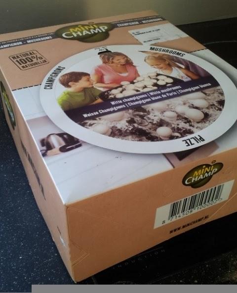 pas que pour les filles test un kit champignons de paris a faire pousser chez soi tape 1. Black Bedroom Furniture Sets. Home Design Ideas