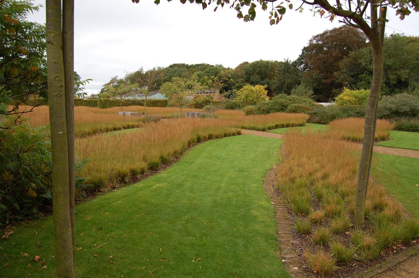 Noel\'s Garden Blog: Cold n\'dry, lean n\'mean