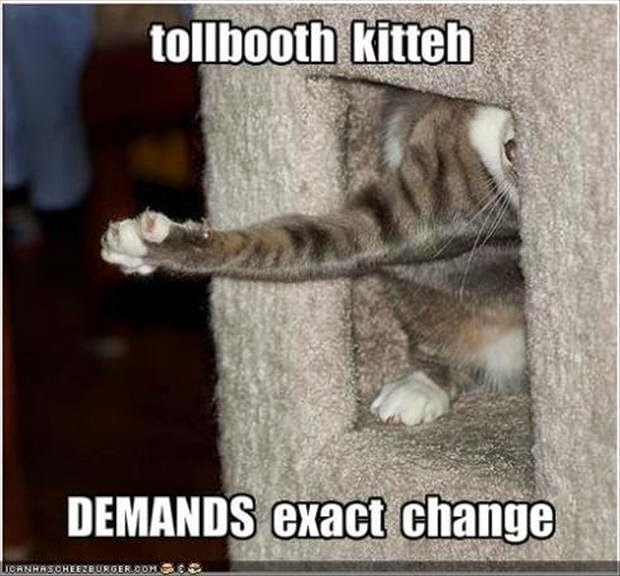 30 Funny animal captions - part 24 (30 pics), animal pictures with funny captions, funny animals, funny captions