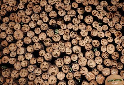 Libertem Ana Paula- Greenpeace, árvores chorando