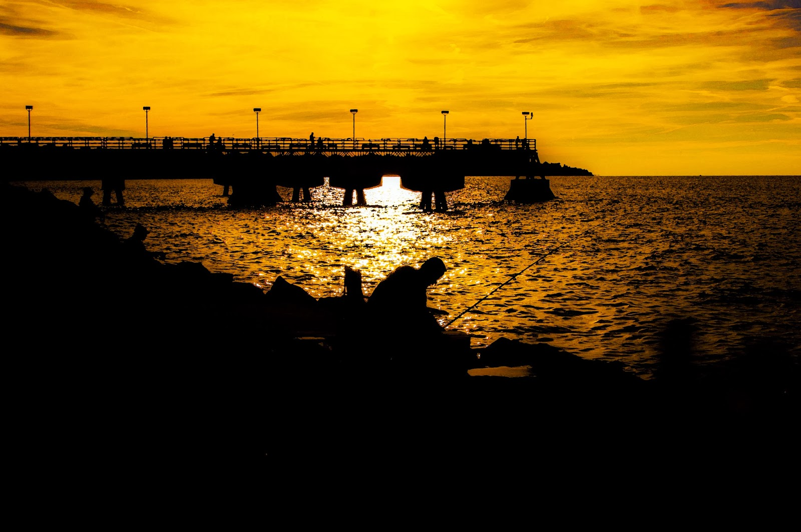 The irreverent psychologist edgewater fishing for light for The edge water
