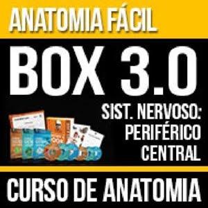 Curso de Neuro Anatomia