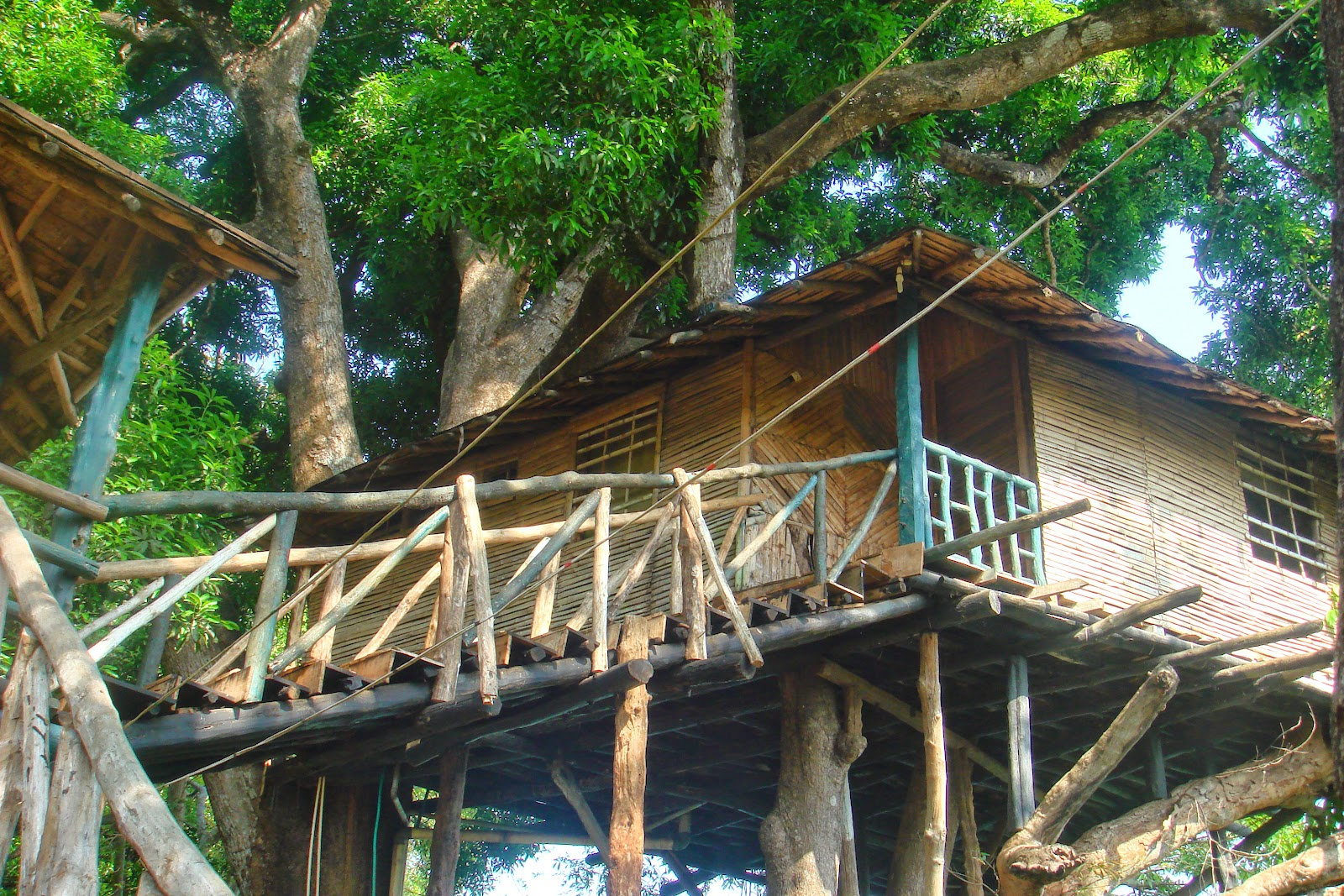 Tree House at Dandeli