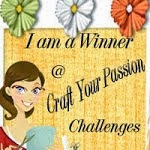 Winner Craft your passion