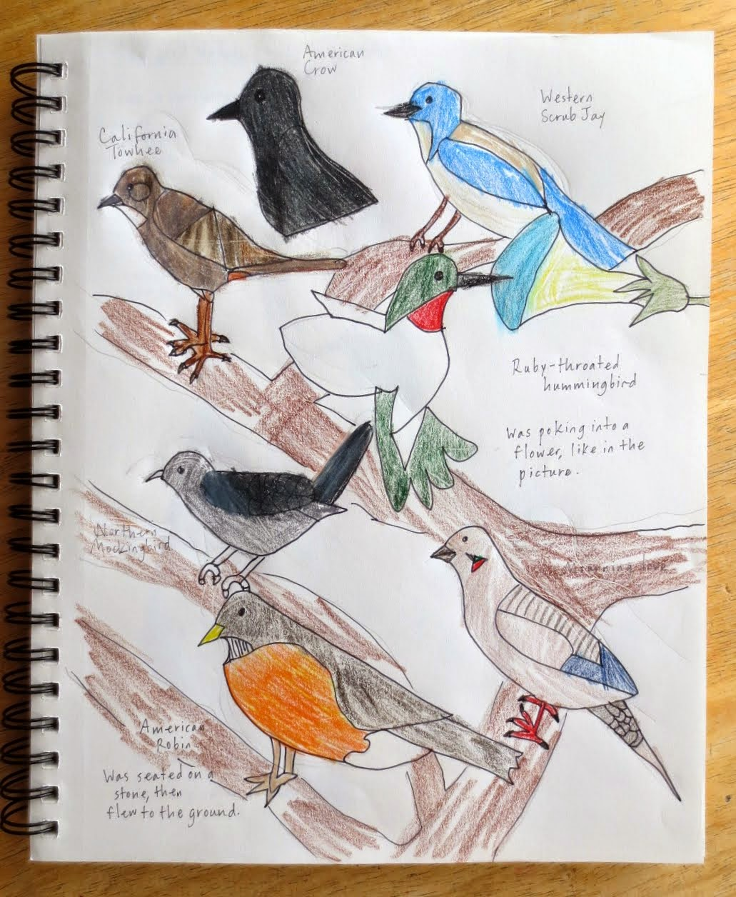 Joyous Lessons The Living Page Nature Journals