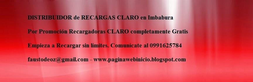 DISTRIBUIDOR DE RECARGAS EN IMBABURA