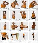 Exercicis de Rehabilitació