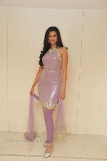 Hasha Nandini pos at cmr aashadam event 004.jpg