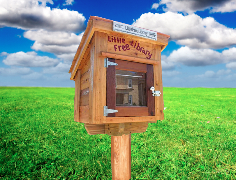The Little Library, free community library, box