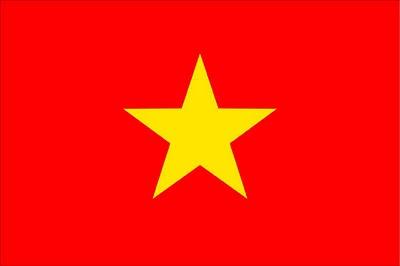 Vietnam Flag Picture