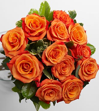 Single orange rose meaning images for The meaning of orange roses