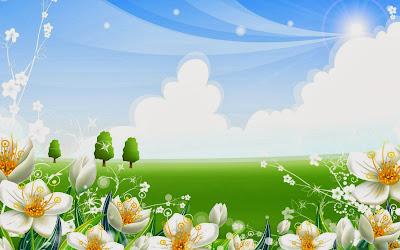 Summer flowers wallpaper