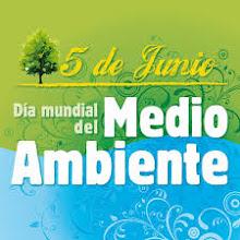 5 de JUNIO