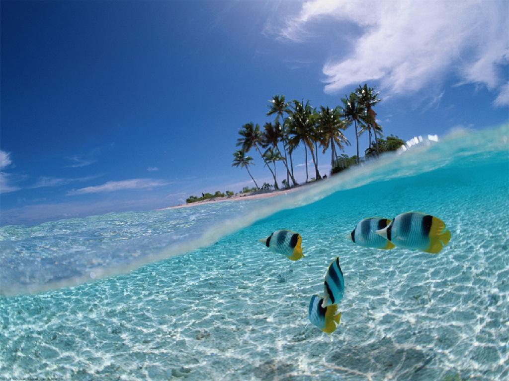 Beautiful Island in Indonesia