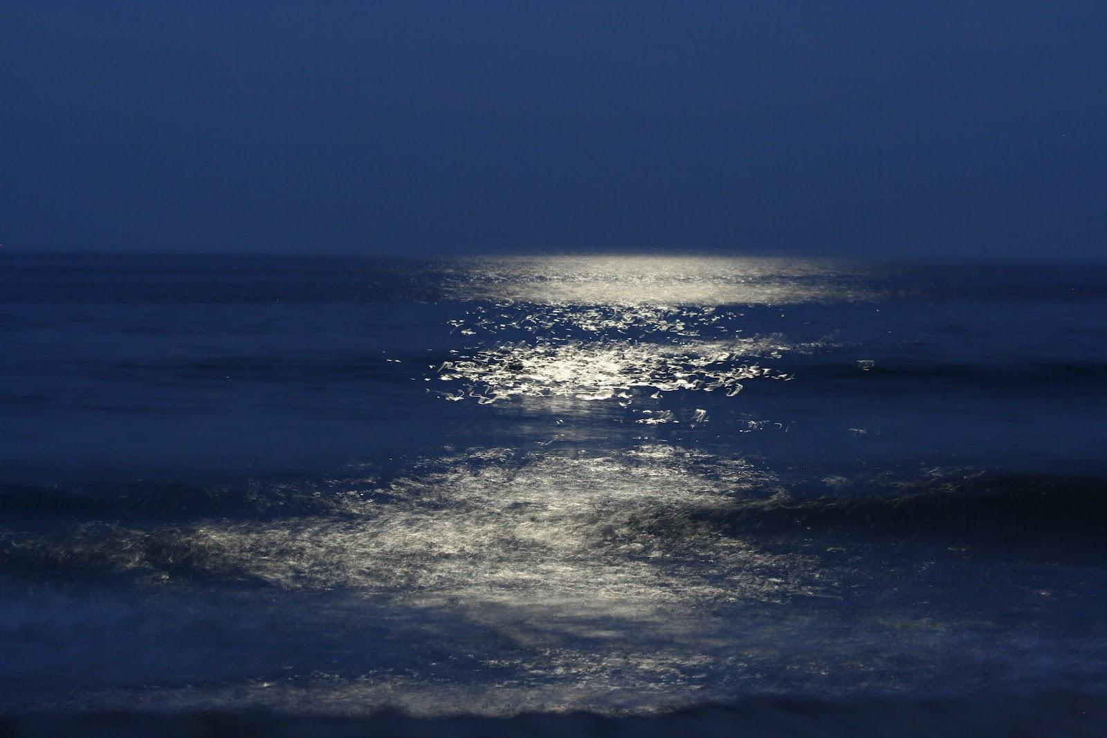 Once in bonus code generator bet365 com 2017 rar bet365 4 1 a Blue Moon…