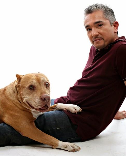 Pide una imagen - Página 3 Cesar-millan-encantandor-perros