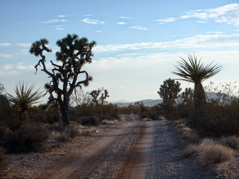 Road to Searchlight, Eldorado Valley