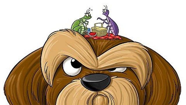 Afbeeldingsresultaat voor a perro flaco todo son pulgas