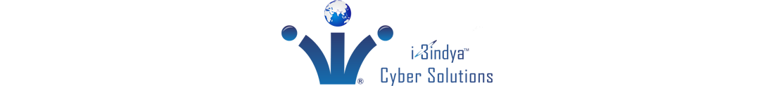 i3indya Cyber Solution