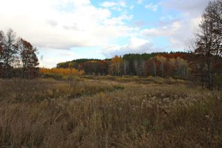 photo of autumn vista