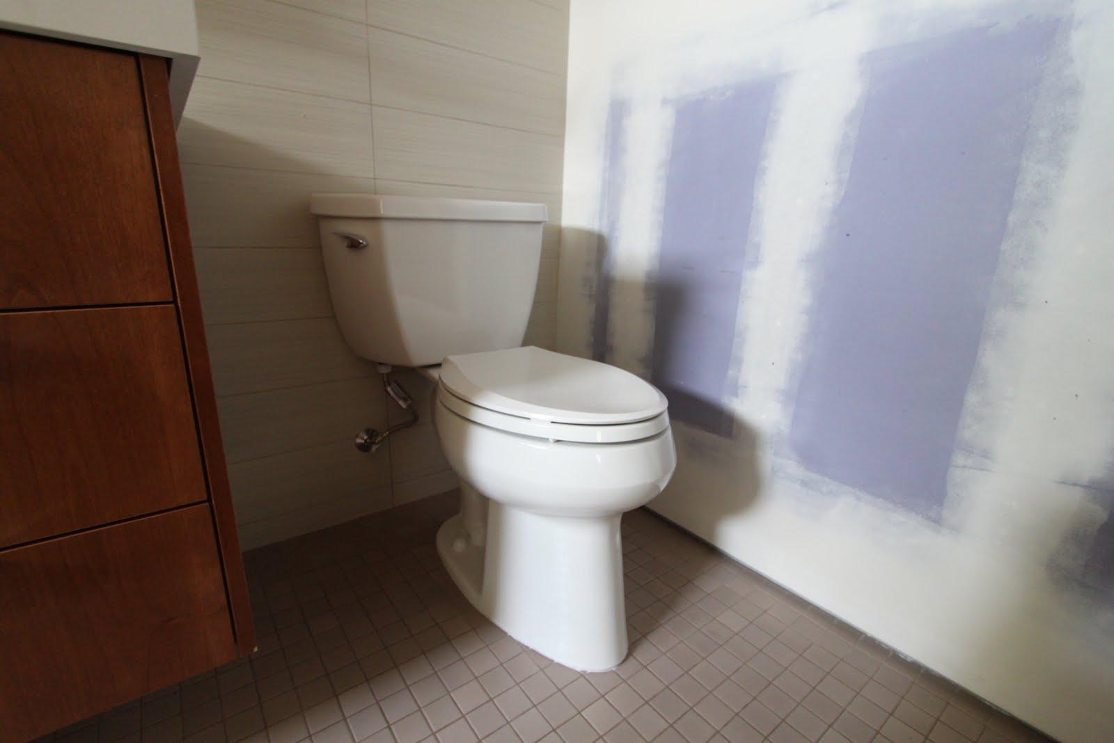 kohler wellworth classic pressure lite elongated toilet