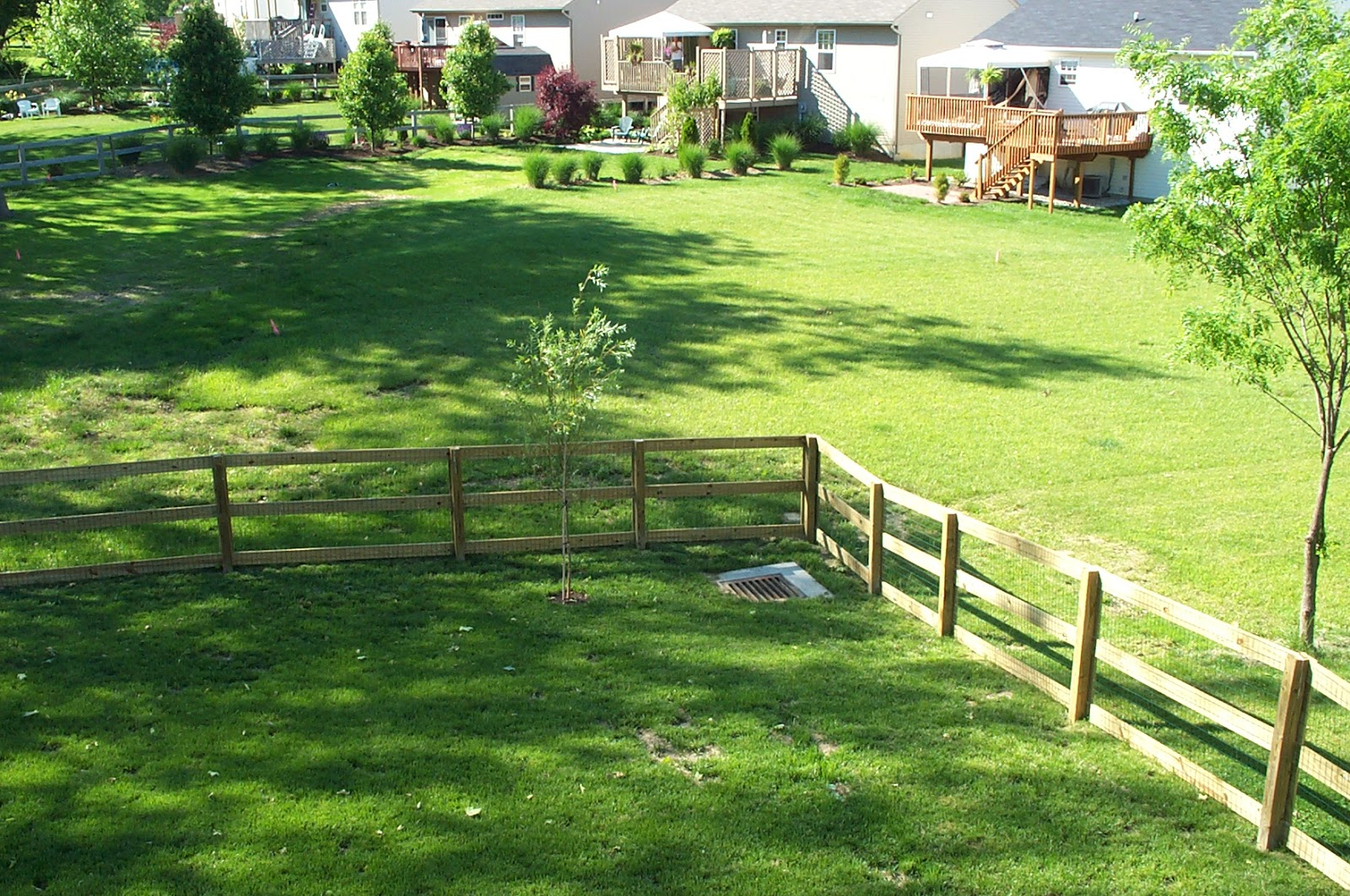 simple backyard ideas design for home