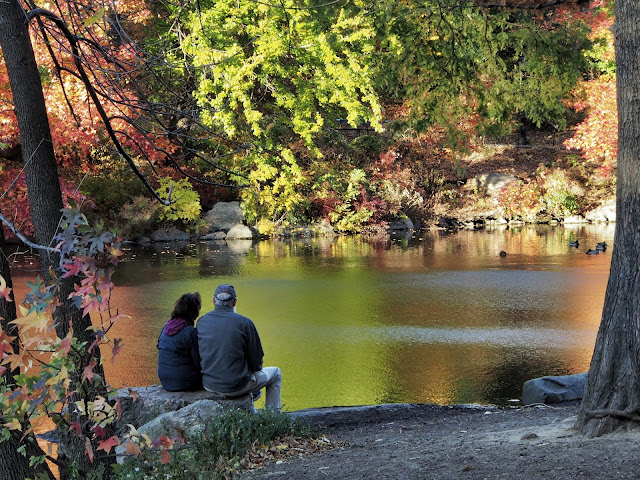 Peaceful, #couple, #fallfoliage, #fallcolors, Central Park, NYC