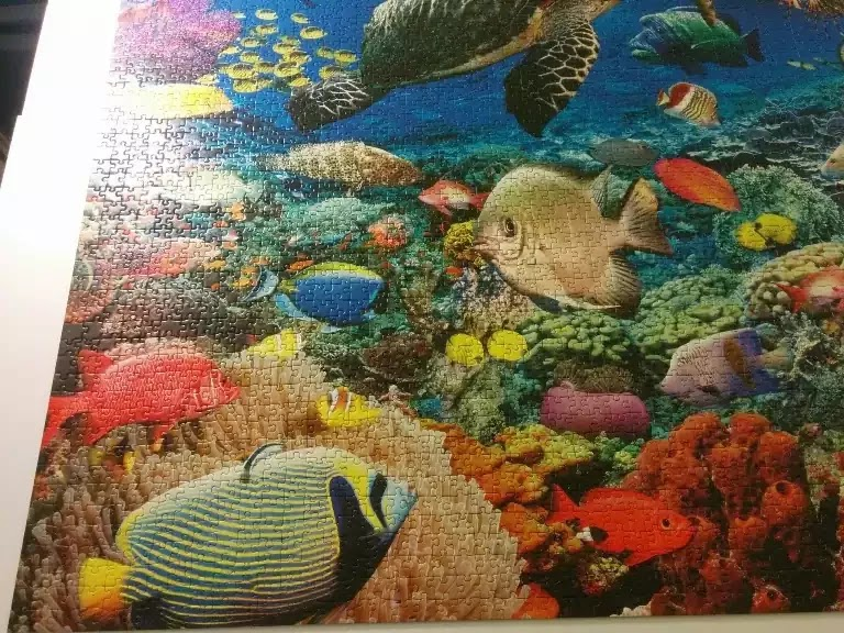 Ravensburger Under the Sea 5000 piece jigsaw puzzle close-up 3