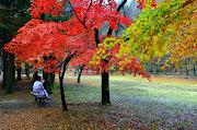 Hiking Mania to see fall foliage